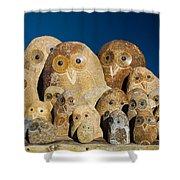Stone Owls Shower Curtain