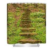 Stone Step Trail 1 Shower Curtain