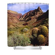Stonecreek Canyon In The Grand Canyon Shower Curtain