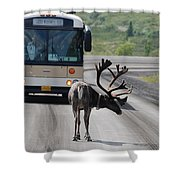 Stopping Traffic Shower Curtain
