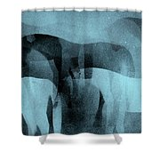 Storm Shadows Shower Curtain