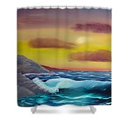 Stormy Beach Shower Curtain