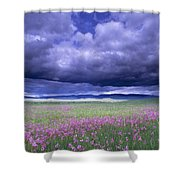 Stormy Clouds Approaching Field Of Shower Curtain