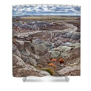 Stormy Morning At Petrified Forest  Shower Curtain