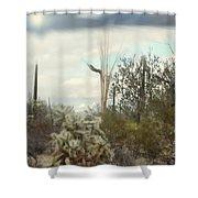 Stormy Sunshine Shower Curtain