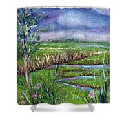 Stormy Wetlands Shower Curtain