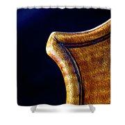 Stradivarius Corner Closeup Shower Curtain