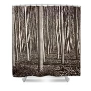 Straight Trees Shower Curtain