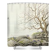 Strata Exposed Shower Curtain