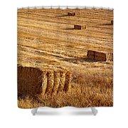Straw Field Shower Curtain