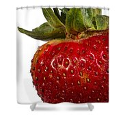 Strawberry Close Up No.0011 Shower Curtain