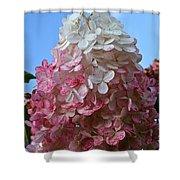 Strawberry Vanilla Hydrangea Shower Curtain