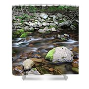Stream In Nova Scotia Shower Curtain