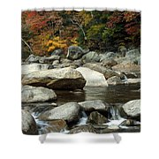Streamside Color Shower Curtain