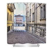 Street With Houses Shower Curtain
