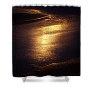 Gold Water On The Street Shower Curtain