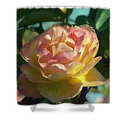 Strike It Rich Rose Shower Curtain