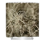 Stringy Lichen Shower Curtain
