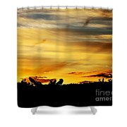 Stripey Sunset Silhouette Shower Curtain