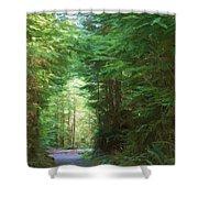 Stroll Through The Quinault Rain Forest Shower Curtain