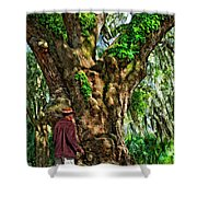 Strolling With Giants Painted Shower Curtain