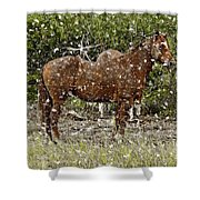 Strong Always Shower Curtain
