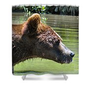 Strong Profile Shower Curtain