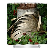 Stump And Fronds Shower Curtain