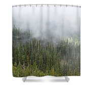 Sublime Beauty Shower Curtain