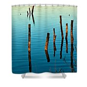 Submerged Trees At Sunset Shower Curtain