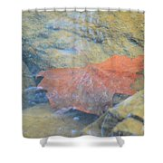 Submergence Shower Curtain