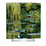 Subtle Light And Shade Reveal Shower Curtain