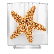 Sugar Starfish Shower Curtain