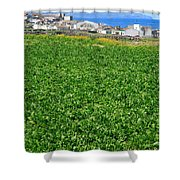 Sugarbeet Field Shower Curtain