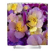 Sugared Pansies Shower Curtain