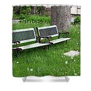 Summer Bench And Dandelions Shower Curtain by Lorraine Devon Wilke