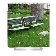 Summer Bench And Dandelions Shower Curtain