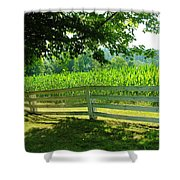 Summer Corn Shower Curtain
