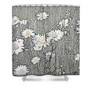 Summer Daisies Shower Curtain