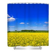 Summer Field Shower Curtain by Amanda Elwell