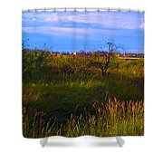 Summer Shot Of Old Shack By Creek, St Shower Curtain