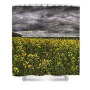 Summer Storm Clouds Over A Canola Field Shower Curtain