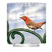 Summer Tanager Shower Curtain