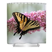 Summer Time Pleasures Shower Curtain