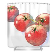 Summer Tomatoes Shower Curtain