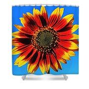 Summerflower Shower Curtain