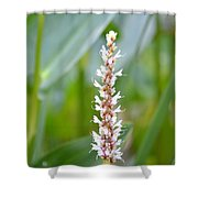 Summer's End Bloom Shower Curtain
