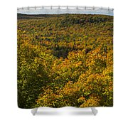 Summit Peak Autumn 10 Shower Curtain
