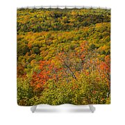 Summit Peak Autumn 6 Shower Curtain