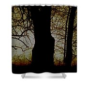 Sun - Sunrise - Breaking Dawn Shower Curtain